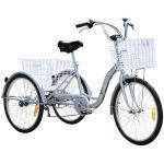 Adult Trike Bike 24 inch Silver Tricycle 3 wheels