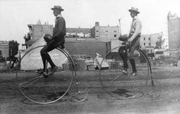Trike Bike | Adult 3 wheel tricycle