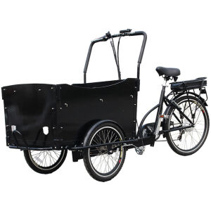 Trike Bike | Adult 3 Wheel Electric Cargo Tricycle
