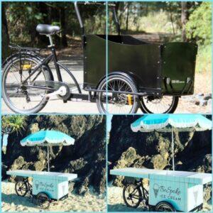 Trike Bike | Adult 3 Wheel Electric Cargo Tricycle