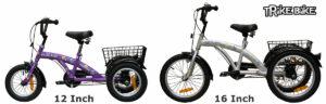 Childrens 12 inch and 16 inch Trike Bike