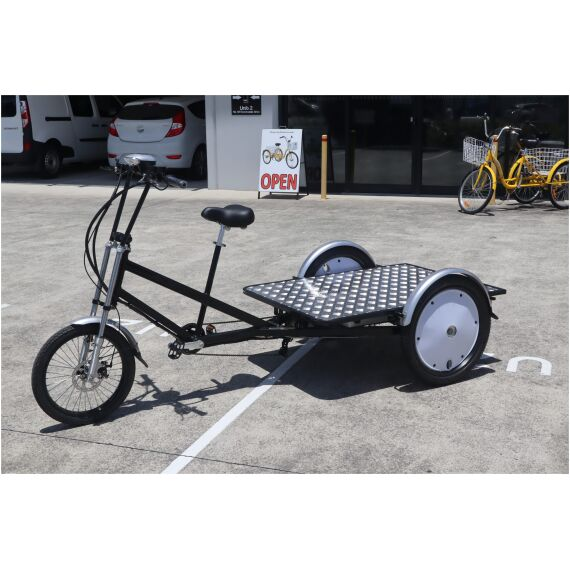 Trike Bike | Adult 3 Wheel Electric Cargo MAX Tricycle
